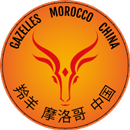 Gazelles Morocco China Logo